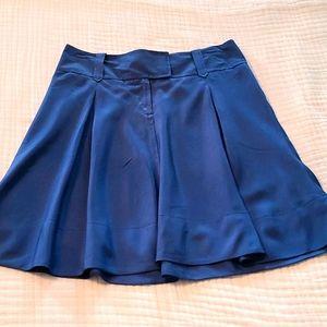 Fossil Silk Skirt